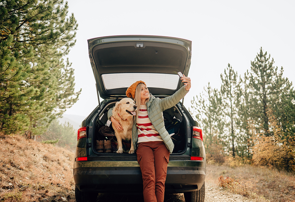 Person and dog on a road trip